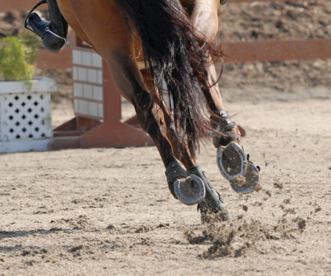 horse Arena Footing sands