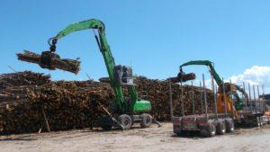 Hardwood logs 2