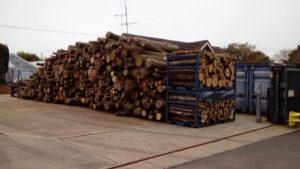 Hardwood logs 6